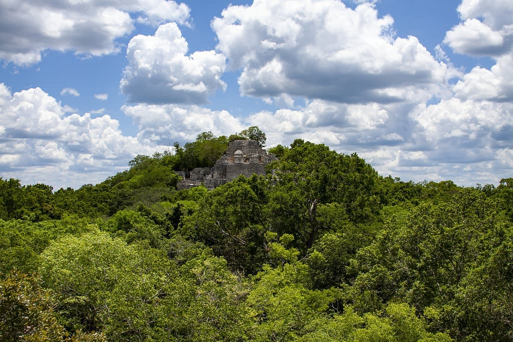 Calakmul temple maya mexique